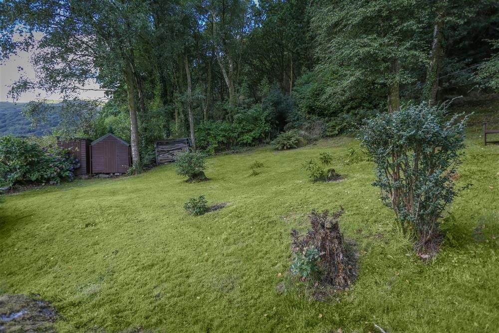 Rear garden and wooded area