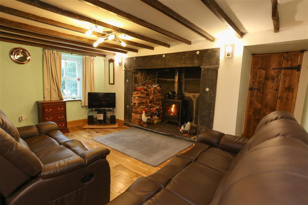 A very comfortable Lounge with a log burner fireplace.