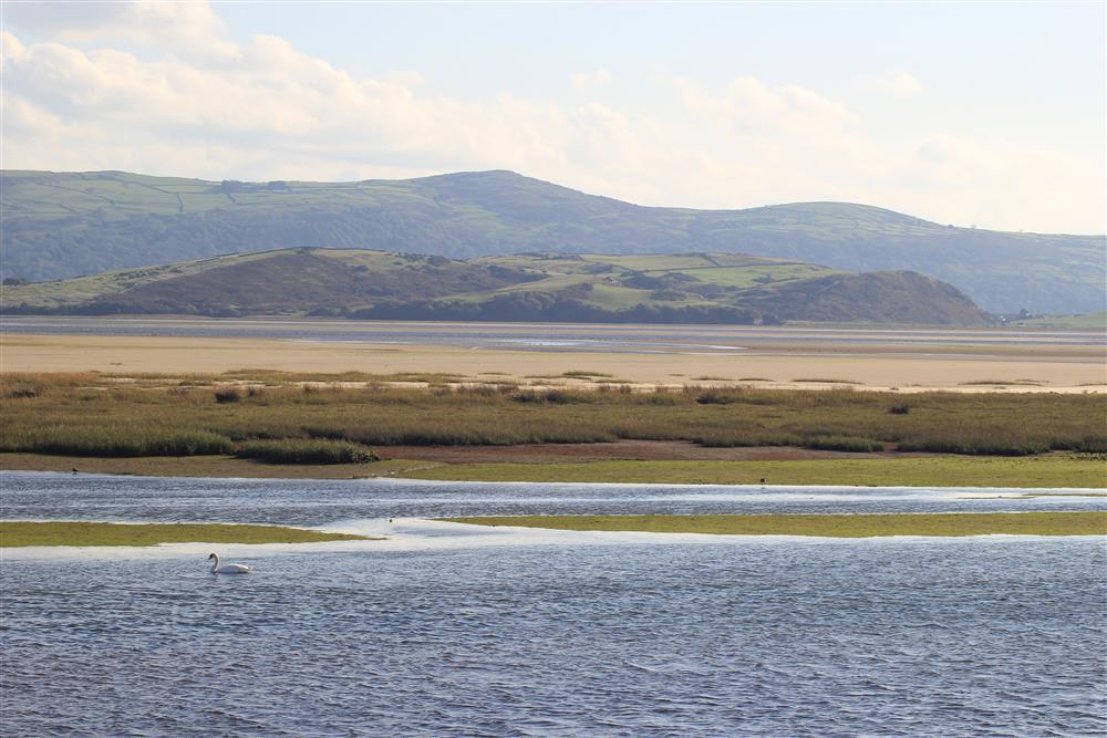 The view of the estuary