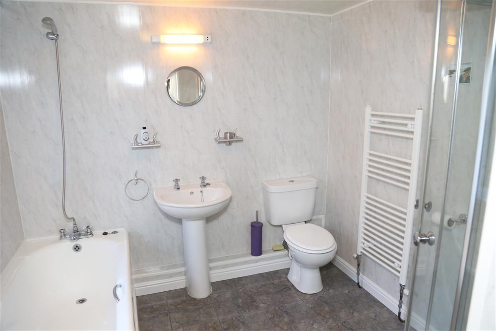 Donwstairs bathroom with shower