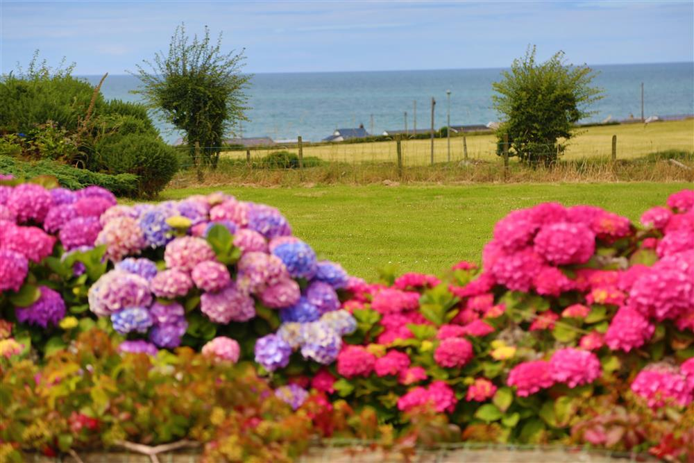 Views to sea as well as lots of flower and fauna