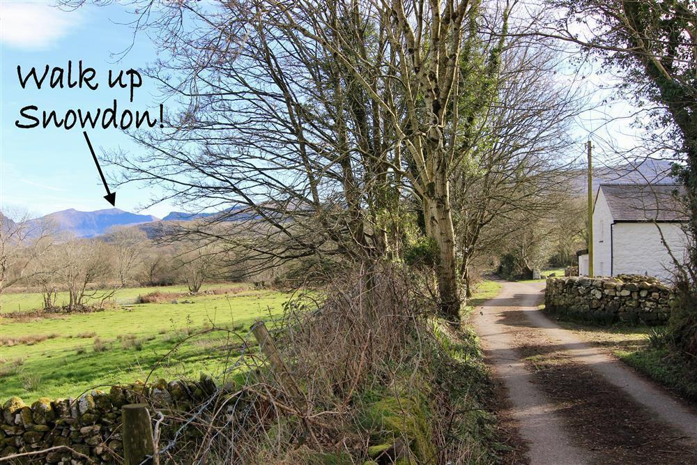 The driveway to the cottages, from here and the carpark area you can see Snowdon!