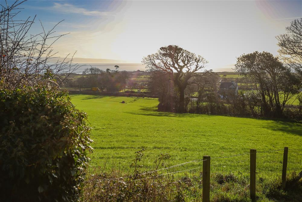 The view from the front door of the countryside and the sea. There is a footpath through this field towards the main road, which you cross and join the footpath through other field towards the sea.