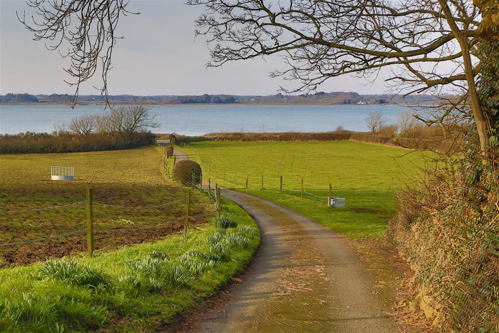 View out to the Menai Straits from the drive to Apple Tree
