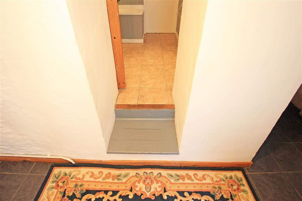 These are the two steps up to the bathroom (Ground Floor)