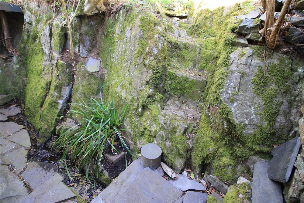 The rocky step up to the back garden