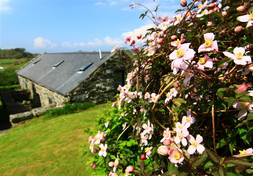 Relax in the beautiful Welsh countryside