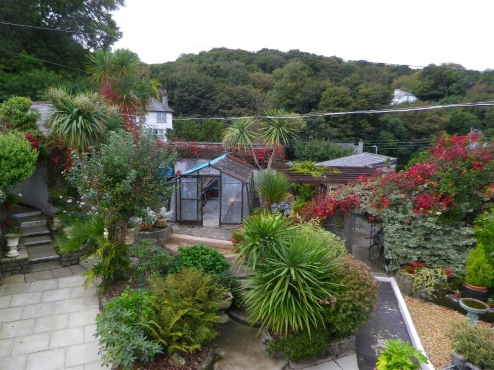 Garden view from the Crow's Nest kitchen (shared with 1174A)