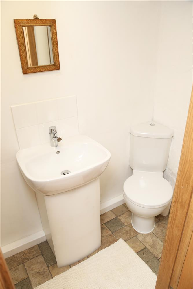 WC and hand wash basin in shower room